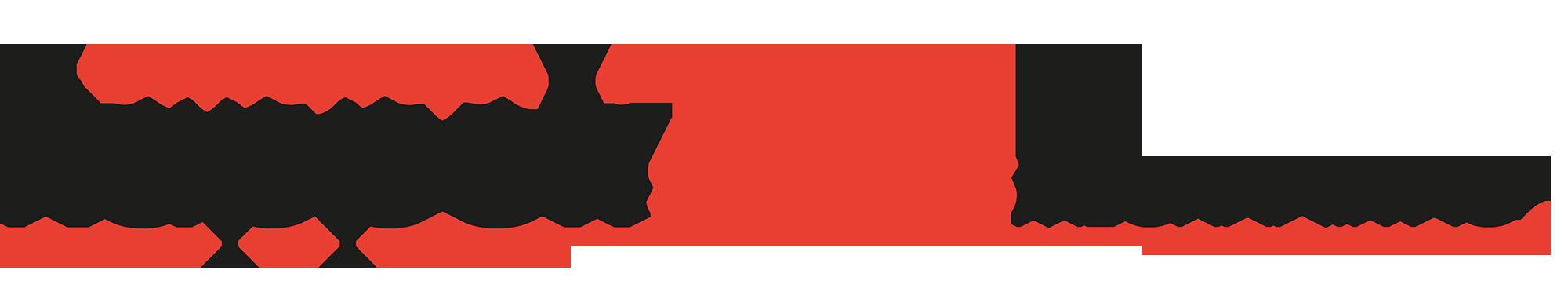 logo_kaeppeli_schweisstmechanik_klein
